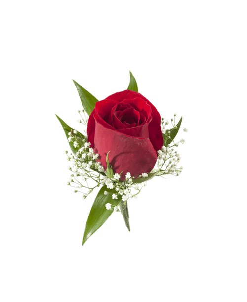 Red Rose Boutonniere Royer S Flowers And Gifts Flowers