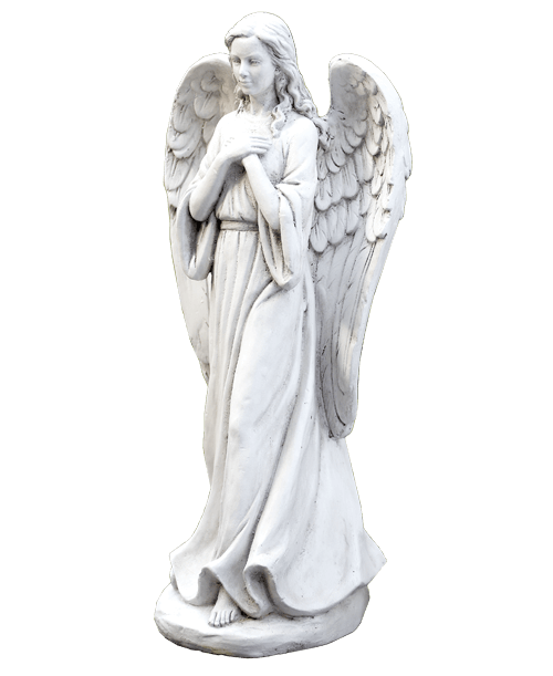 Praying angel royer 39 s flowers and gifts flowers for Praying angel plant