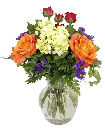 Floral Collection Royers flowers and gifts Flowers Plants