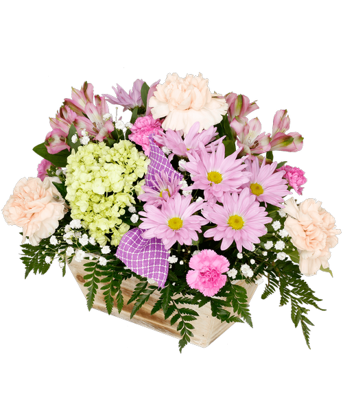Easter splendor connells maple lee flowers and gifts flowers easter splendor 3999 negle Gallery